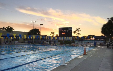 Swimming and diving teams train in Florida for two weeks over