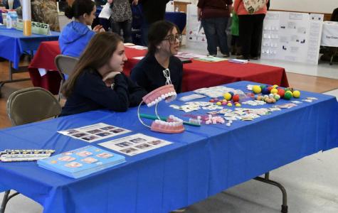 Annual children's dental health fair creates community smiles
