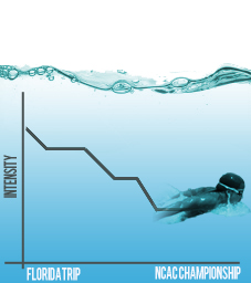 Over the course of the season, Allegheny swimmers reduce the intensity of their workouts as the NCAC Championships approach. Graphic by Dana D'Amico/The Campus
