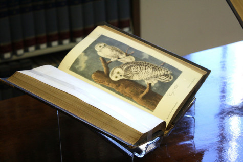 """James Audubon's """"Birds of America"""" and """"Quadrupeds of North America"""" are valued between $15,000-20,000."""