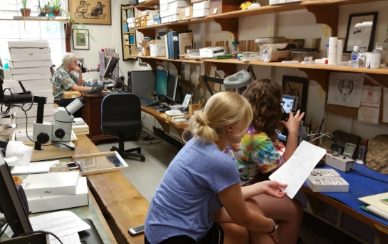 Paige Hickman, '17, and Kaye Moyer, '19, check out bee samples in the United States Geological Survey Bee Identification and Monitoring Lab in Beltsville, Maryland, while Sam Droege, wildlife biologist and lab head, examines their samples during the summer of 2016.