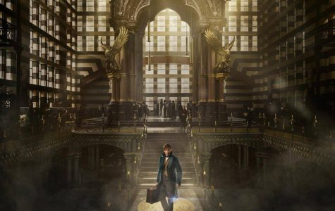 Discover new magic in 'Fantastic Beasts and Where to Find Them'