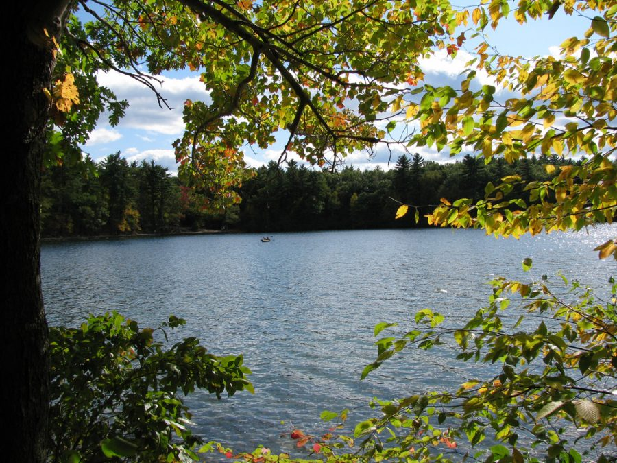 "Walden Pond, pictured here on Oct. 4, 2008, was designated a National Historic Landmark in 1962 as a result of Thoreau's memoir, ""Walden; or, Life in the Woods,"" which he wrote after spending two years living on its shores."