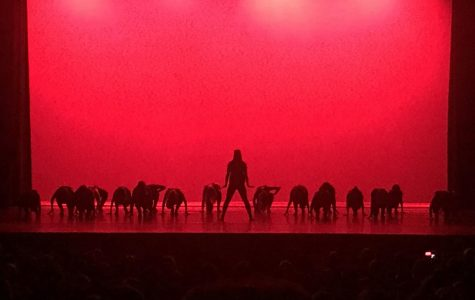 The Allegheny College Dance Team performs to a music mix at the JaDE Benefit Concert in Shafer Auditorium on Saturday, March 3, 2018.