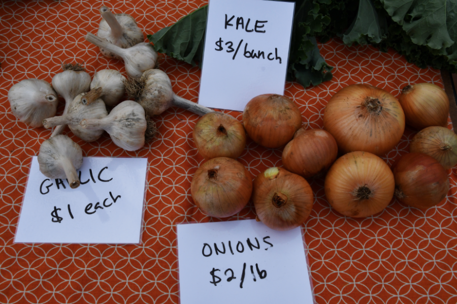 Produce from the Allegheny College Carrden sits for sale at the DeHart community market.