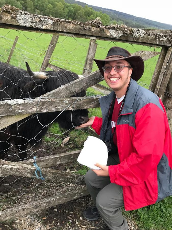 David feeds a cow during a trip to Ireland and Scotland after his May 2018 graduation.