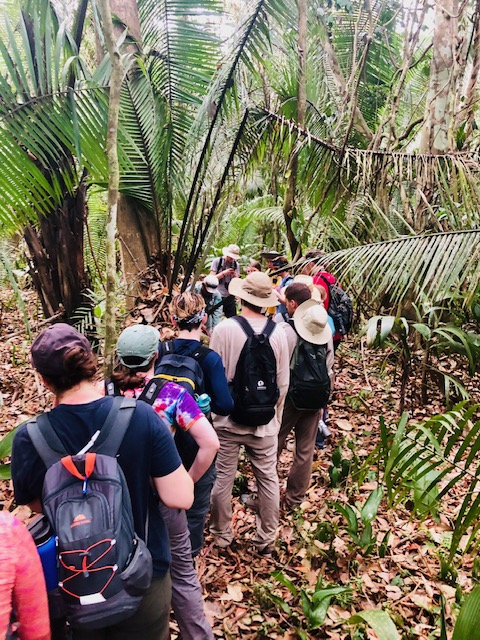 Experiential learning trip travels to Belize, studies cacao