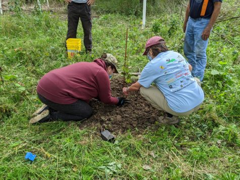 Volunteers help plant a tree as part of the cleanup